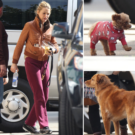 Blake-Lively-Pictures-Sweatpants-Her-Dogs-Gossip-Girl-Set